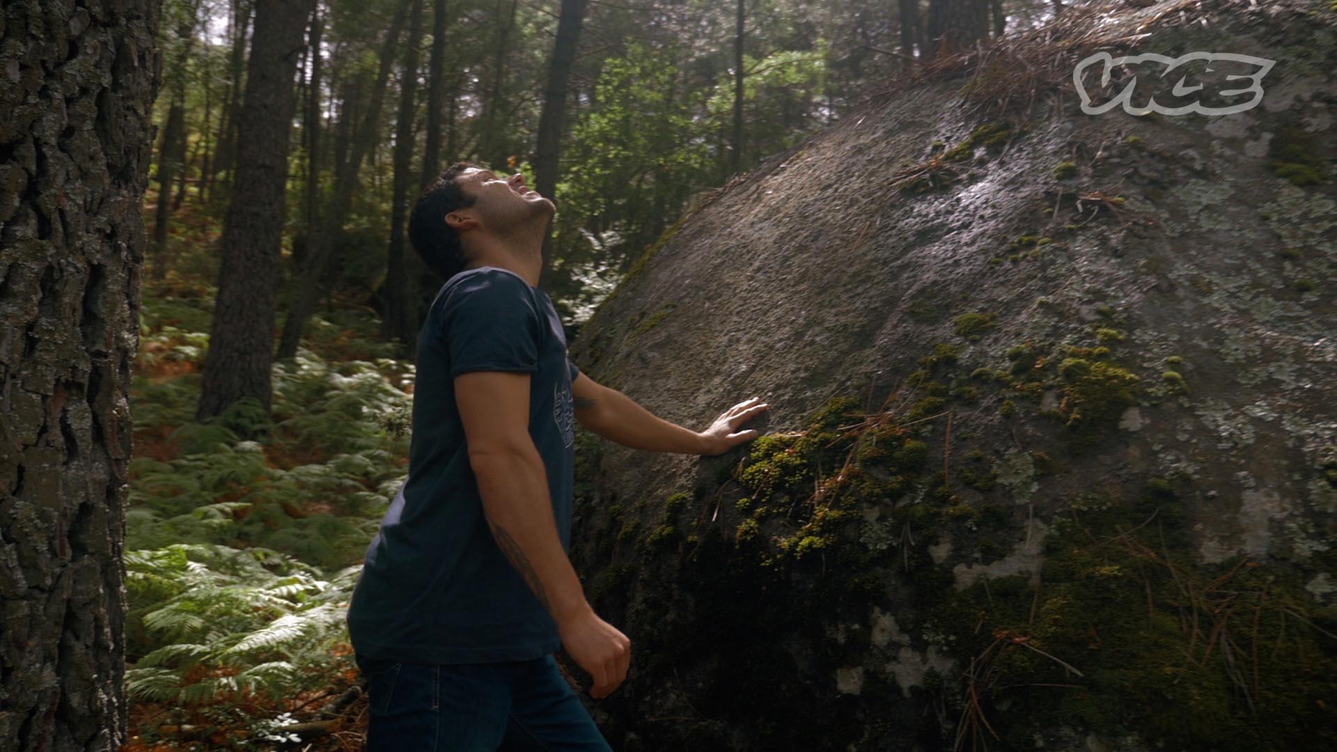 STILL-Mosca-forest
